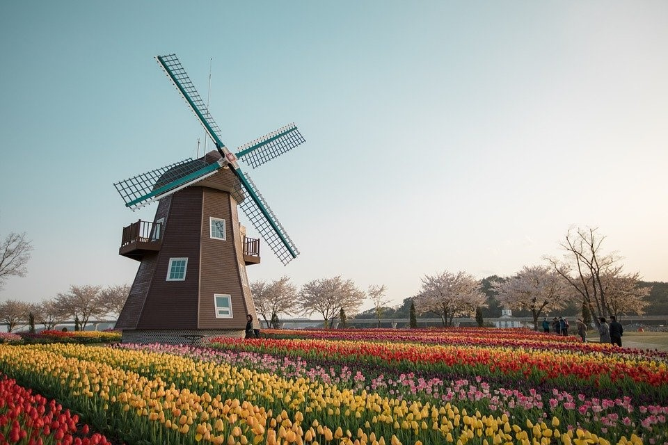 neerlandais